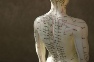 Acupuncture-Model